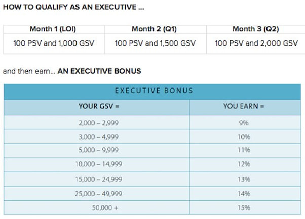 What is the Nu Skin qualifying levels